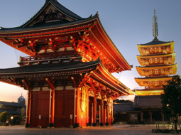 TOKYO DIAMOND EXCHANGE